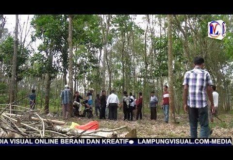 VIDEO: DPRD Tubaba Terima Laporan Warga Terkait Jaringan Sutet