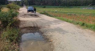 Warga Desa Talang Jali Lampura Keluhkan Jalan Penghubung Dua Desa Rusak Parah