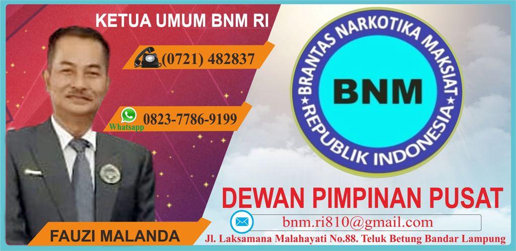 BNM RI