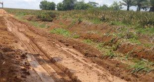 Budi Harapkan Pembangunan Jalan Berlumpur