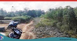 Warga Dusun Karta Rk 11 Harapkan Peningkatan Jalan